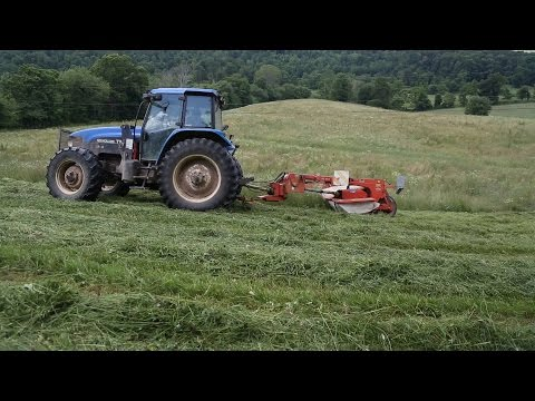 Mowing Hay | New Holland TM 125 Farm Tractor | Kuhn Disc Mower FC 302