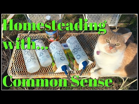 Homesteading with Common Sense~