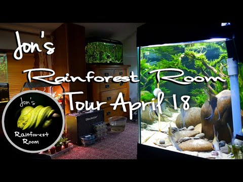 Reptile Room Tour April 2018