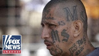 LI top cop: We will not be intimidated by MS-13