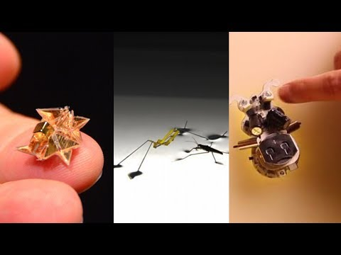 Best 5 NanoRobots For you if You Love to play with Micro Robots.