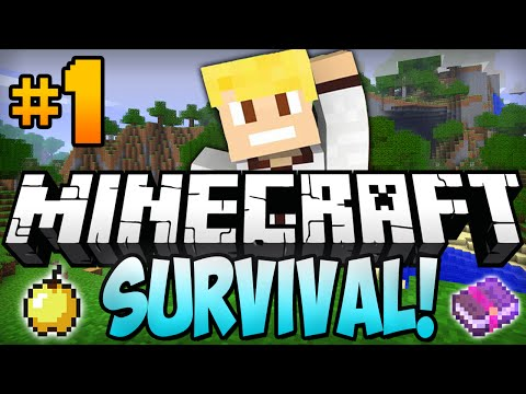Minecraft Survival Let's Play EP.1 -