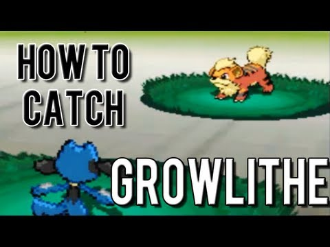 How to Catch Growlithe - Pokemon Black 2 and White 2