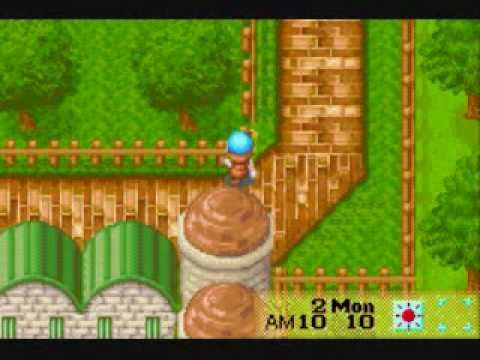 Harvest Moon:Friends of Mineral Town Cheats