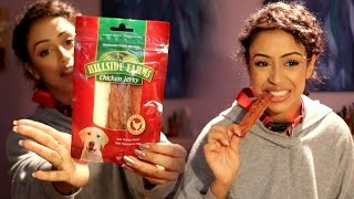 EATING DOG FOOD!! DOLLA STORE HAUL!