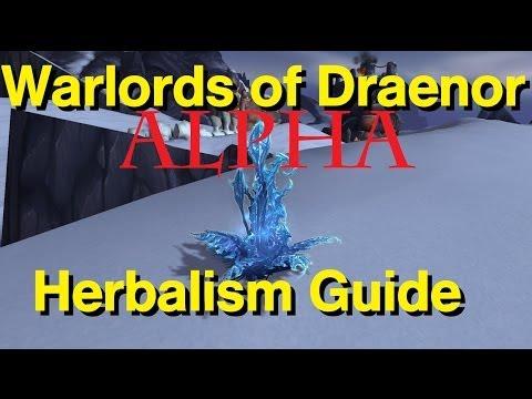 Warlords of Draenor Alpha Herbalism Guide
