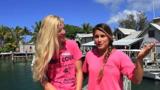 Shark asks divers for help!!!