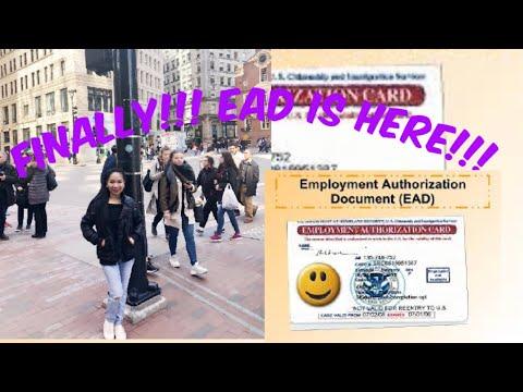 EMPLOYMENT AUTHORIZATION CARD (EAD)