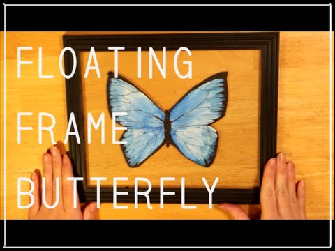 floating frame butterfly