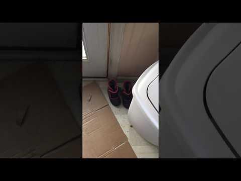 Norwex Clean Kitchen Floor Before Mop System