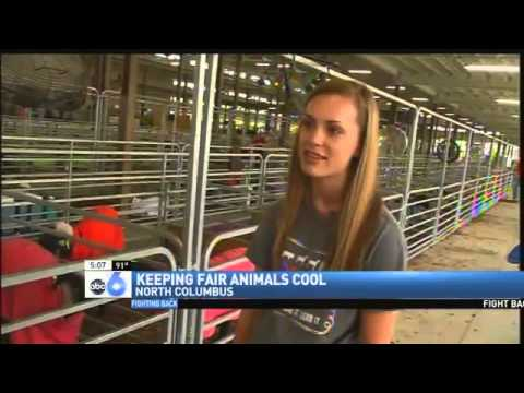 Dealing with the Heat: Ohio State Fair Working to Keep People and Animals Safe