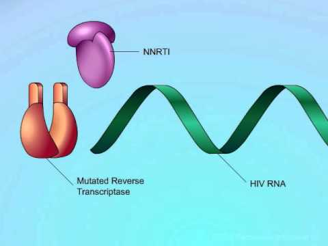 HIV: Mechanisms of NNRTI Resistance
