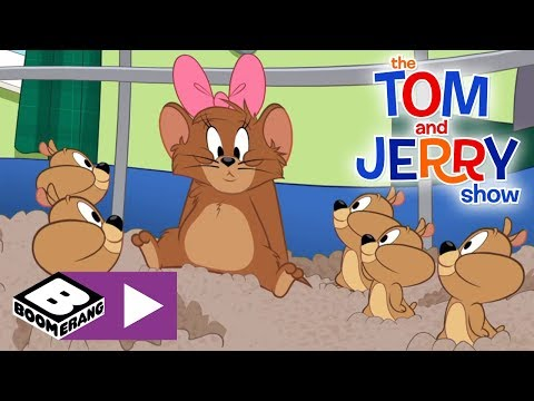 Xxx Mp4 The Tom And Jerry Show 10 000 Hamster Pups Boomerang UK 3gp Sex