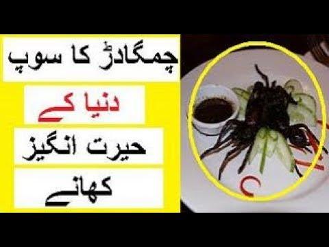 Strange Foods Around the World -- Hairat Angez Khanay
