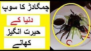 Dunya Ke Hairat Angez Khanay -- Shocking Foods