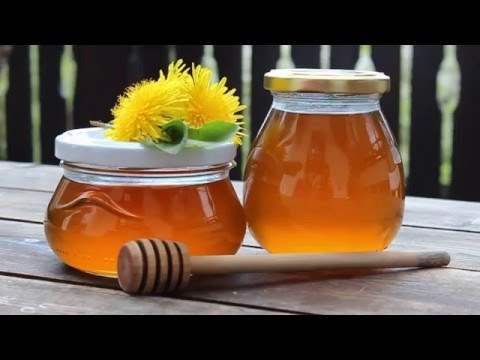 Make Your Own Dandelion Honey / Syrup