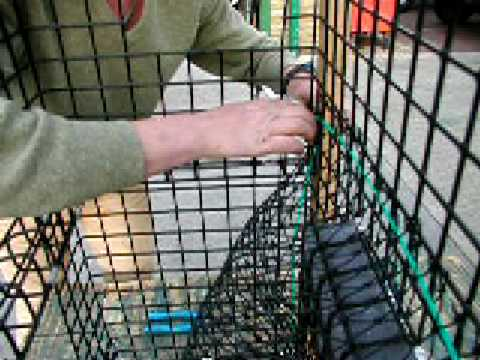 How to Build a Lobster Trap: 13 Fitting the Parlour Net( Part 1 )