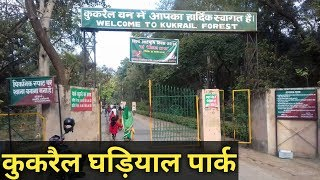 Kukrail picnic spot Lucknow, Uttar Pradesh