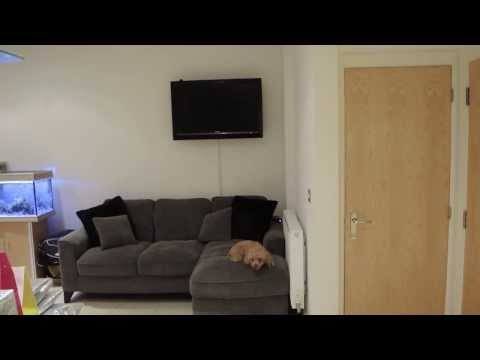 My Home Media Setup & Network + Server In Depth