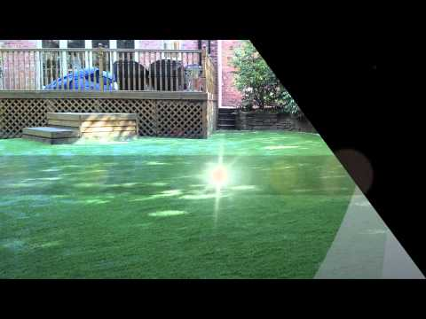 Artificial Grass for Dogs Alderley Edge Suppliers