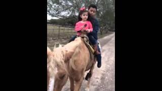 A caballo despacio