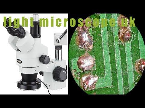 ☂☯the ten best Light microscope uk review