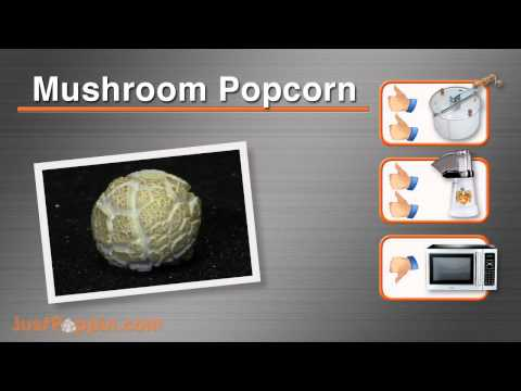 What Is Popcorn? :: A Popcorn Buying Guide