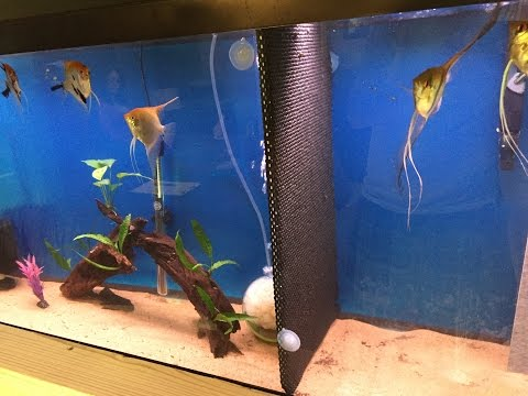 Diy Aquarium Divider