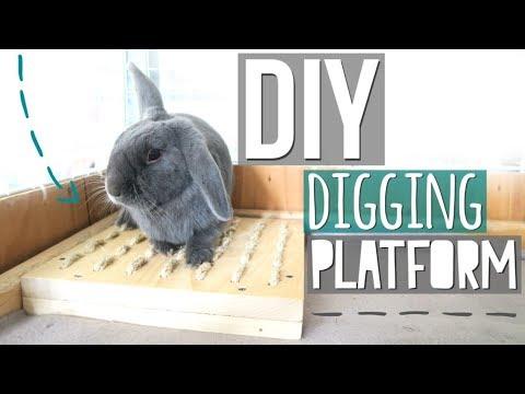 DIY Digging Platform for Rabbits