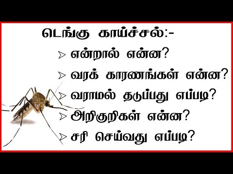 டெங்கு காய்ச்சல் | Dengue fever Symptoms, treatments, prevention Dengue Awareness |Dengue tamil tips