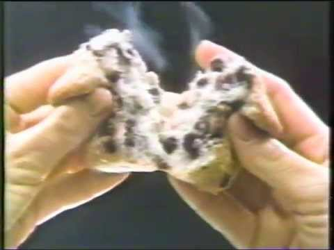 1984 Dunkin Donuts muffins from Dunkin Donuts Commercial