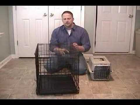 How To Stop a Dog From Barking While Crate Training