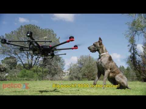 Introducing the Petco DooDoo Drone! (Petco)