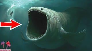 """هل تعلم ان الحوت الذى ابتلع سيدنا يونس """"ما دام حي إلى ألأن"""".. لن تصدق ولكن ستصدق"""
