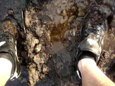 Soccer shoes in cow poo