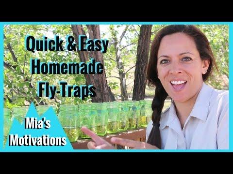 LIfehack - Homemade Fly Traps | Mia's Motivations