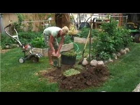 Preparing Your Garden : How to Make a Home Compost Pit