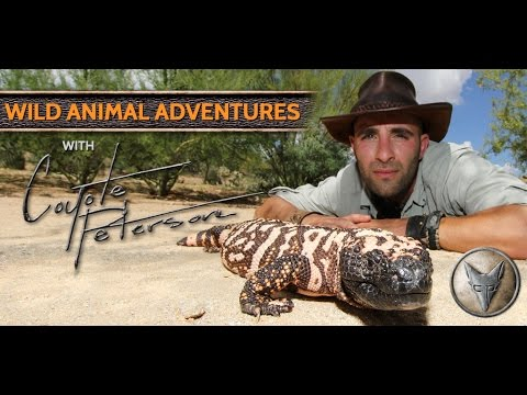 Wild Animal Adventures with Coyote Peterson - App for Kids