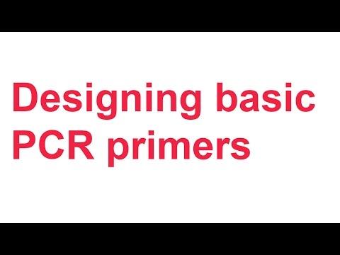 Tutorial 1: Designing basic PCR primers