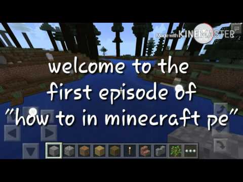 How to in minecraft PE - how to tame ocelot?