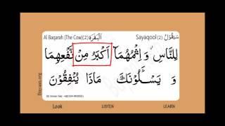 Surah Al Baqarah, The Cow, Surah 002, Verse 219, Learn Quran word by word translation
