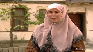 Domates Salçası - Ev Yapımı - TRT Avaz