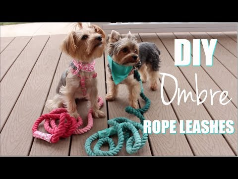 DIY Dog Leashes | Dyed Using Ombre Method