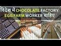 विदेश में CHOCOLATE FACTORY और  EGG FARM WORKER चाहिए  | 3 YEAR VISA | 9888365665, 9988365665