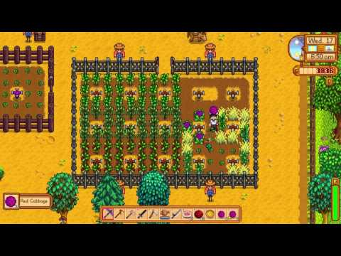 How to get Red Cabbage - Stardew Valley