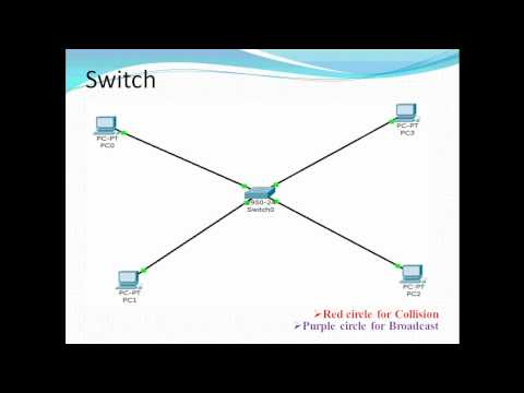 How to find broadcast domain and collision domain in a network