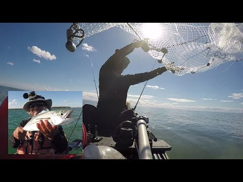 Finding Pilchards & Kayak Cast-netting From Sitting Position