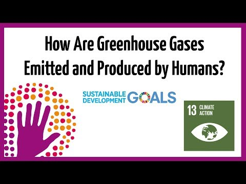 How Are Greenhouse Gases Emitted and Produced By Humans?