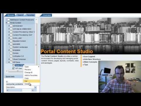 Create iView and Assign to Role: SAP Portal Tutorial (Part 3)