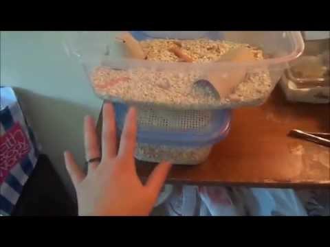 My Feeder Worm Bins   Preventing &  Eradicating Grain Mites